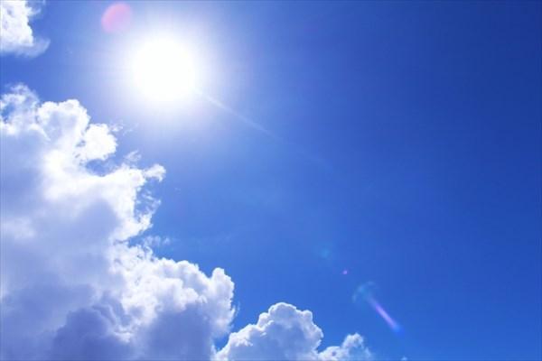 直射日光を避ける